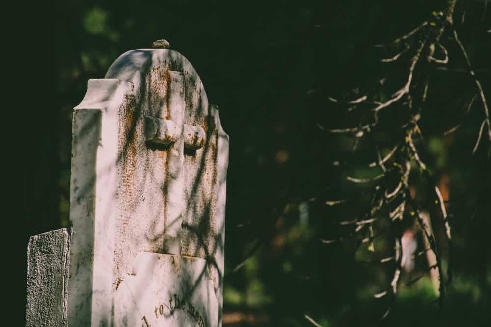 Sekcja zwłok i ekshumacja